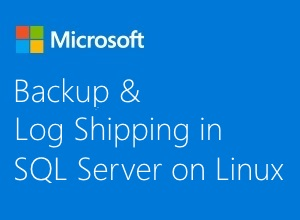 backup and log shipping in sql server on linux